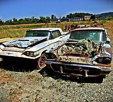 Pair of 1960 Thunderbirds by Ralf372