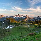 Tatoosh Range Wildflowers from Mazama Ridge by Michael Russell