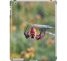 Web Caster iPad Case/Skin