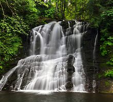 Chase River Falls by Michael Russell