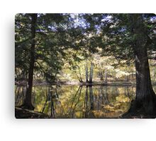 Focal Point Canvas Print