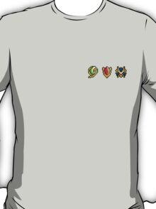 Tiny Spiritual Stones  T-Shirt