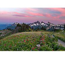 Mazama Ridge Wildflowers Photographic Print
