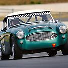 Brian Duffy | Muscle Car Masters | Austin Healey 3000 Mk1 by Bill Fonseca
