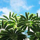 Tropical Greens by Ellen Cotton