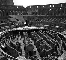 Colosseum, Rome by Rodney Johnson