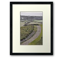 Moonah Links Series #111 Framed Print