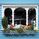 Window of a little vegetarian restaurant by henuly1