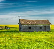 The Prairies 9511_13 by Ian McGregor