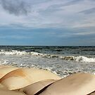 Sand Bags And Waves by Cynthia48