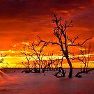Red Hot Sunrise by Chris Brunton