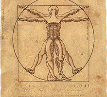 Octruvian Man by Octomanart