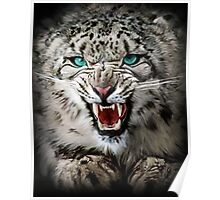 Snow Leopard 3 Poster