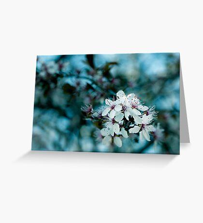 Hello blossom Greeting Card