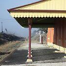 Deepwater Railway Station NSW by Judy Woodman