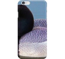 Greater Scaup  iPhone Case/Skin