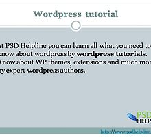 Useful Collection Of Quick WordPress Tutorials  by psdhelpline