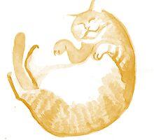 Falling/Sleeping Cat by Vicky Webb