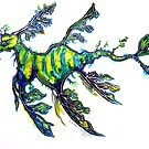Leafy Seadragon by © Linda Callaghan