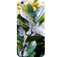 Icy Leaves iPhone Case/Skin
