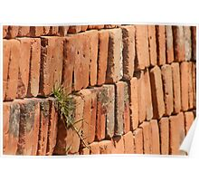 Adobe Bricks with a Tuft of Grass Poster