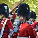 Changing of the Guard by J. Day