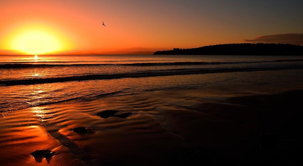 Sun set primrose sands beach  by Robert-Todd