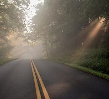 Blue Ridge Parkway by Forrest Tainio
