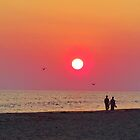 Couple Watching the Sunset by Cynthia48