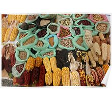 Corn Beans and Seeds Poster