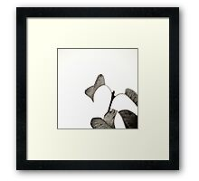 Leaves BW Framed Print