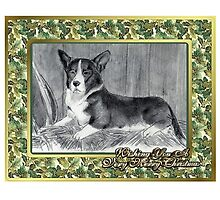 Cardigan Welsh Corgi Christmas by Oldetimemercan
