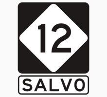 NC 12 - Salvo by IntWanderer