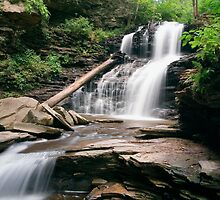 August Evening Below Shawnee Falls by Gene Walls