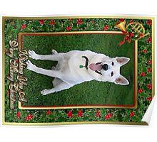 German Shepherd Dog Christmas Poster