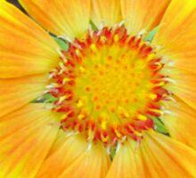 Orange & Yellow Daisy Sticker