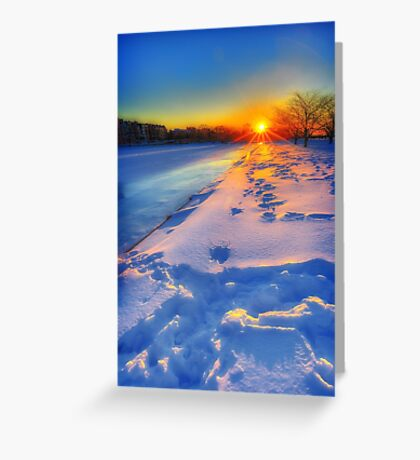 Down the barrel of a winter sun Greeting Card