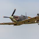 Supermarine Spitfire by Trevor Middleton