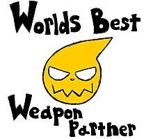 Soul Eater Best Weapon Partner Photographic Print