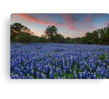 Texas Bluebonnet Images - Evening in the Texas Hill Country 1 Canvas Print