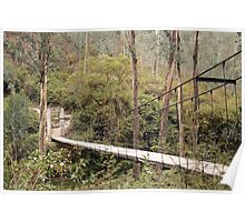 Suspended Bridge Over a Canyon Poster