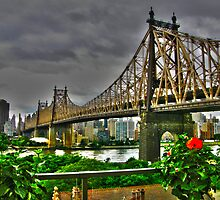 Queens - 59th Street Bridge by Kevin Durst