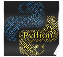 Python Programmer & Developer T-shirt & Hoodie NEW Poster