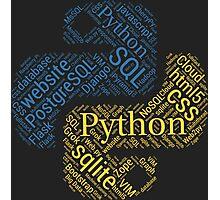 Python Programmer & Developer T-shirt & Hoodie NEW Photographic Print