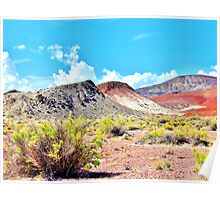 Nevada Can Be Colorful Poster