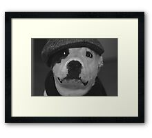 """ Be Cool "" Photographic Print Framed Print"