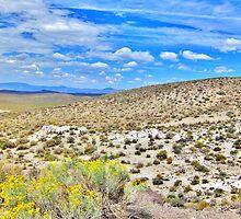 Summer In The Desert by marilyn diaz