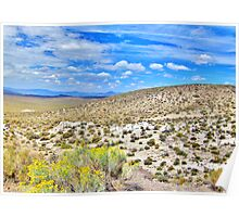 Summer In The Desert Poster