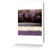 Sweet Summery Scent  Greeting Card