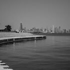 Chicago from the South by Lauri Novak